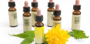 remedii terapia florala Bach